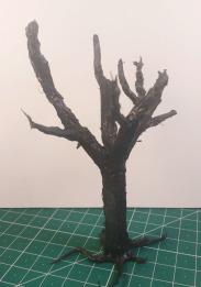 arbre_cola03